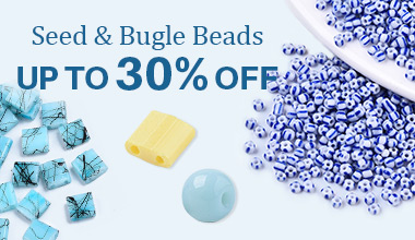 Seed & Bugle Beads
